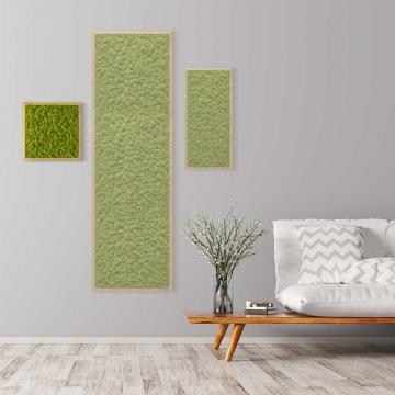 Moosbild Islandmoos 35 x 35 cm mit Tischlerrahmen aus geölter Eiche