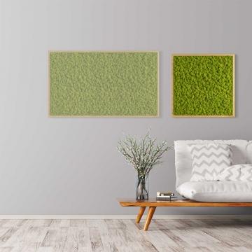 Moosbild Islandmoos 55 x 55 cm mit Tischlerrahmen aus geölter Eiche
