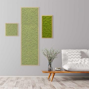 Moosbild Islandmoos 57 x 27 cm mit Tischlerrahmen aus geölter Eiche