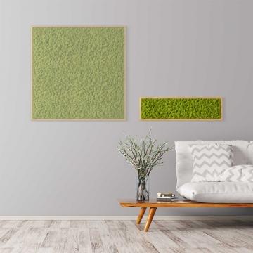 Moosbild Islandmoos 70 x 20 cm mit Tischlerrahmen aus geölter Eiche