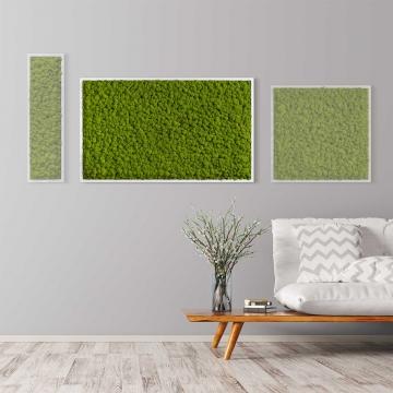 Moosbild Islandmoos 100 x 60 cm mit weißem Tischlerrahmen