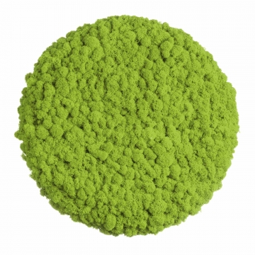 Moos ´Circle´ Islandmoos Apfelgrün Ø 40 cm