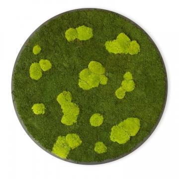Moosbild ´Rund´ Wald- & Kugelmoos im Grün Mix Ø 118cm auf Holzfaserplatte Anthrazit