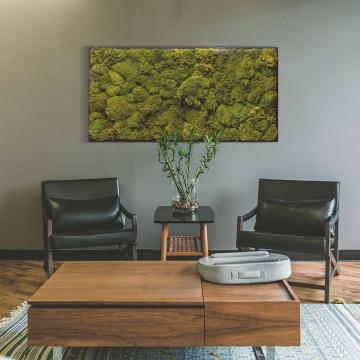 Moosbild Polstermoos / Bärenfell 182 x 82,5 cm auf Holzfaserplatte anthrazit ++