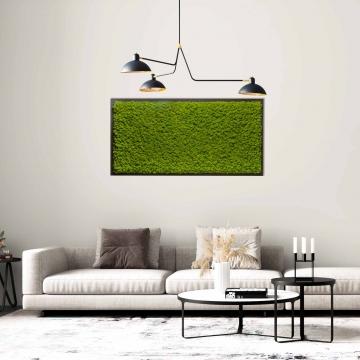 Moosbild Gigant Islandmoos 150 x 75 cm auf Holzfaserplatte anthrazit