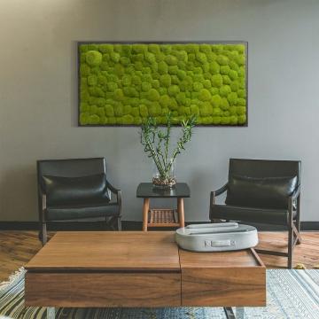 Moosbild Kugelmoos 182 x 82,5 cm auf Holzfaserplatte anthrazit
