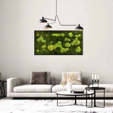 Moosbild Gigant Wald- und Kugelmoos 150 x 75 cm auf Holzfaserplatte anthrazit