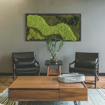 Moosbild Waldmoos & Kugelmoos `Art´ 182 x 82,5 cm mit Rahmen weiß / schwarz