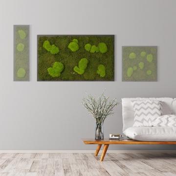 Moosbild Waldmoos & Kugelmoos 100 x 60 cm auf Holzfaserplatte anthrazit