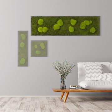 Moosbild Waldmoos & Kugelmoos 140 x 40 cm auf Holzfaserplatte anthrazit