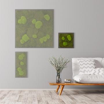 Moosbild Waldmoos & Kugelmoos 35 x 35 cm auf Holzfaserplatte anthrazit