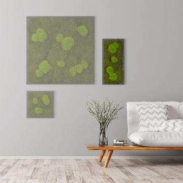 Moosbild Waldmoos & Kugelmoos 57 x 27 cm auf Holzfaserplatte anthrazit