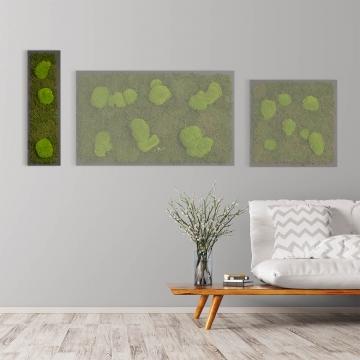 Moosbild Waldmoos & Kugelmoos 70 x 20 cm auf Holzfaserplatte anthrazit