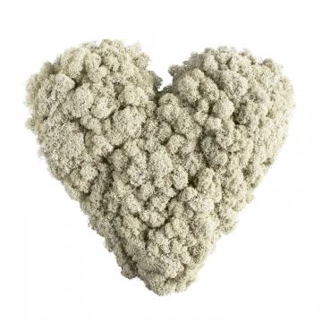 18`er Herz Moosteil mit verottbarer Unterlage (18 Stück)