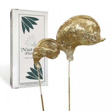 Badam am Stiel gewachst in Gold Glitter ( 40 Stück )