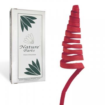 Cane Cone Mini in Rot ( 150 Stück )