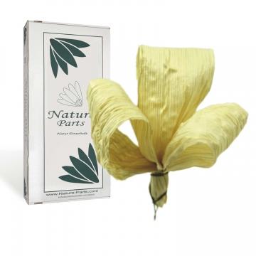 Maisschleife am Draht in Natur (100 Stück)