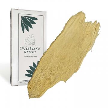 Palmbakla / Palmfaser gebleicht ( 500g )
