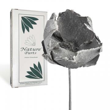 Palm Cup mit Stiel in Frosted Blackwashed ( 40 Stück )