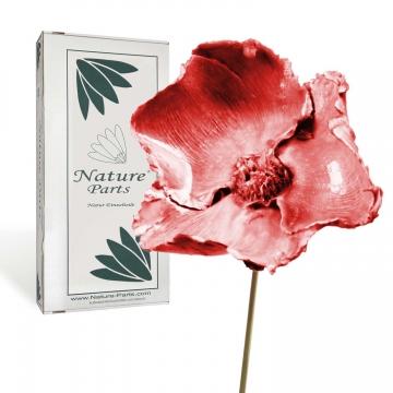 Palm Cup am Stiel gewachst in Rot Antik ( 40 Stück )