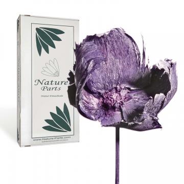 Palm Cup am Stiel in Violettspring ( 40 Stück )