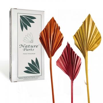 Sortiment Palm Spear Mini im 3fach Farbmix ( 100 Stück )