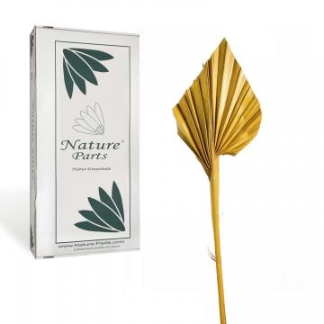 Palm Spear Mini in Gelb ( 100 Stück )