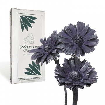 Protea geschnitten Medium in Frosted Purple ( 40 Stück )