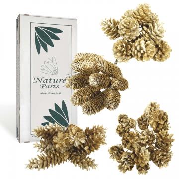 Sortiment Zapfen gewachst in Gold Glitter ( 4fach / 80 teilig )