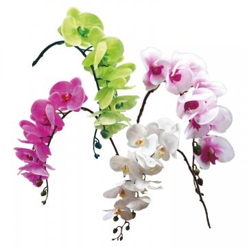Sortiment Orchideen Zweig gummiert im 4fach Farbmix ( ca. 65cm )