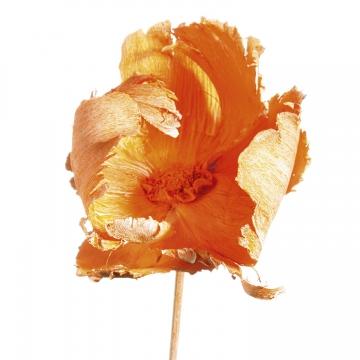 Palm Cup am Stiel in Orangespring [40 Stück]