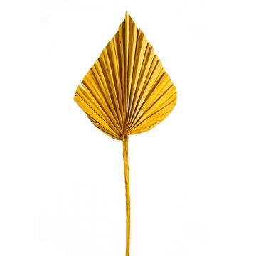 Palm Spear mit Stiel Medium in Gelb (450 Stück)