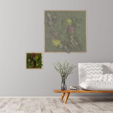 Moosbild ´Pflanze´ 35 x 35 cm mit Rahmen aus geölter Lärche