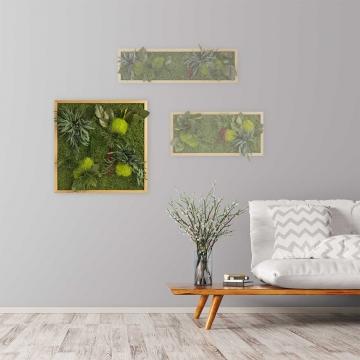 Moosbild ´Pflanze´ 55 x 55 cm mit Rahmen aus geölter Lärche