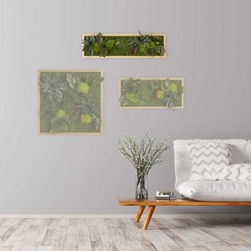 Moosbild ´Pflanze´ 70 x 20 cm mit Rahmen aus geölter Lärche