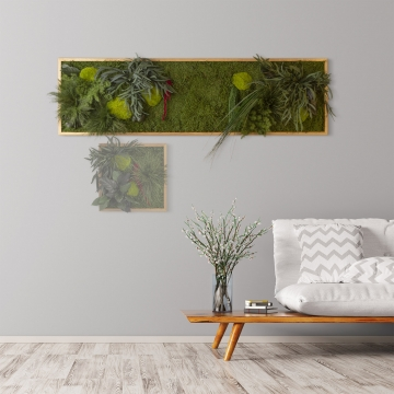 Moosbild ´Pflanze´ 140 x 40 cm mit Rahmen aus geölter Eiche