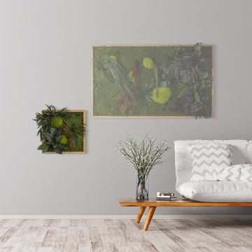 Moosbild ´Pflanze´ 35 x 35 cm mit Rahmen aus geölter Eiche