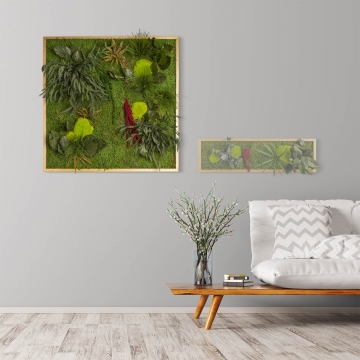 Moosbild ´Pflanze´ 80 x 80 cm mit Rahmen aus geölter Eiche