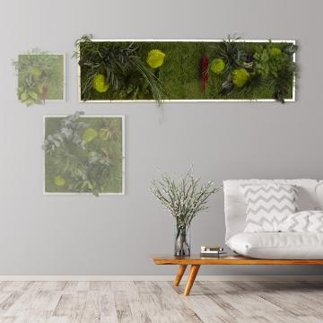 Moosbild ´Pflanze´ 140 x 40 cm mit weißem Tischlerrahmen