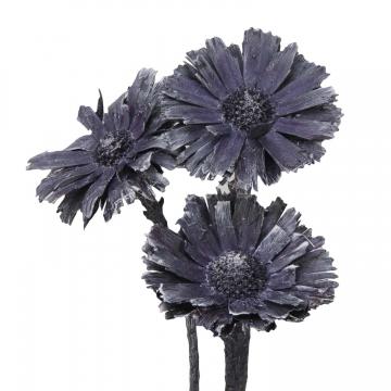 Protea geschnitten Medium in Frosted Purple (350 Stück)