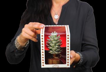 Oppacher Räucherbaum / Räuchermännchen Grün Light mit Glitter ( Größe des Baumes ca. 15x10cm ) (12 Stück)