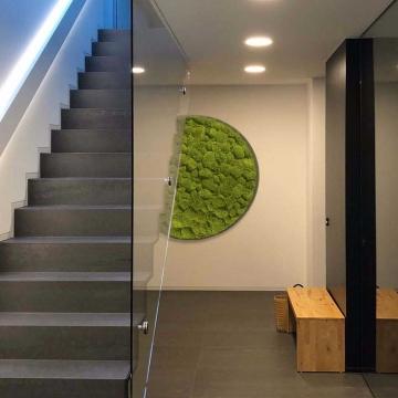Moos•Moos Rundbilder Gigant aus Ballenmoos präpariert in Apfelgrün ( Ø 118cm )