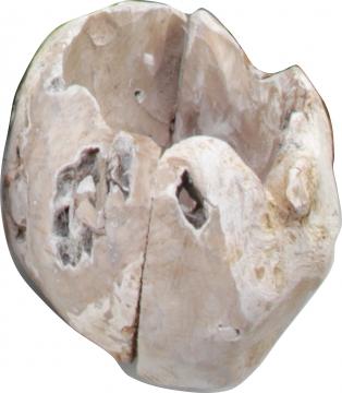 Wurzelholz Topf in Stonewashed ( ca. Ø 20cm )
