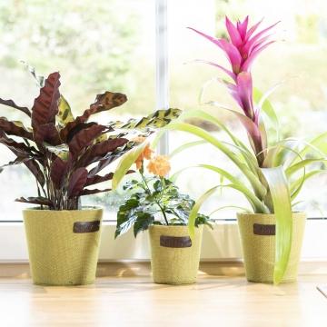 Jute Blumen Dekotopf ´Flower´ 3er Set in Grün mit Pflanzenfolie ( Ø12,5 / Ø15 / Ø18cm )