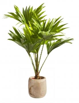 Pflanzentopf aus Paulowina Holz [ ca. Ø 15,5cm H 18cm ] in Naturhell mit Folie