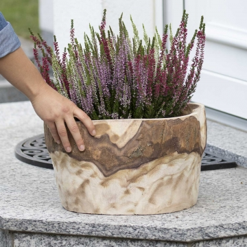 Dekoschale aus Paulowina Holz gewellt [ ca. Ø 33cm H 21cm ] in Naturhell