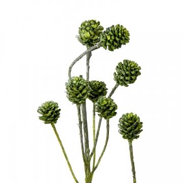 Salignum Zweig Extra in Frosted Green  (200 Stück)