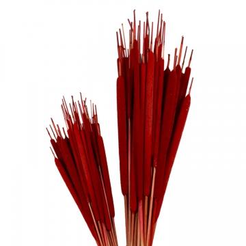 Schilfkolben Medium in Rot ( VE 100 )