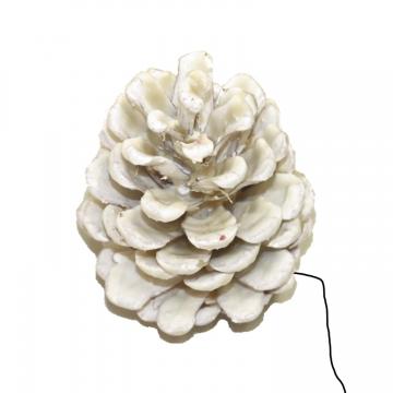 Schwarzkiefer Zapfen am Draht gewachst in Creme Weiß (240 Stück)