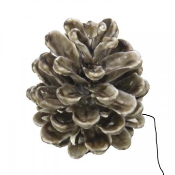 Schwarzkiefer Zapfen am Draht gewachst in Mocca Grey (240 Stück)